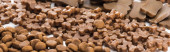 selective focus of fresh assorted dry pet food in lines, panoramic shot