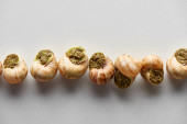 top view of delicious cooked escargots in row on white background