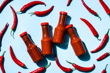Top view of bottles with homemade chili sauce and chili peppers on blue background stock vector