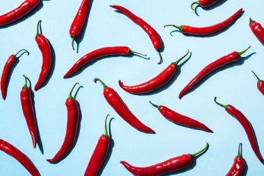 Top view of red chili peppers on blue background stock vector