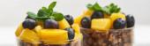 közeli kilátás ízletes granola konzerv őszibarack, áfonya és menta, panorámás lövés