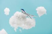 Fotografie hračka letadlo létání mezi bílé nadýchané mraky z bavlněné vlny izolované na modré