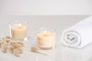 Fluffy bunny tail grass near burning white candles in glass and rolled towel on marble white surface stock vector
