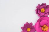 horní pohled na papír střih fialové květy izolované na bílém