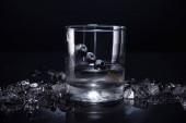 transparentes Glas mit Wodka und Blaubeeren in der Nähe von zertrümmertem Eis auf schwarzem Hintergrund