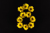 Photo top view of yellow daisies arranged in number 8 isolated on black
