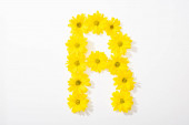top view of yellow daisies arranged in letter R on white background