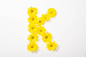 top view of yellow daisies arranged in letter K n white background