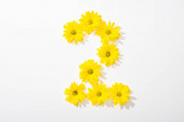 top view of yellow daisies arranged in number 2 on white background