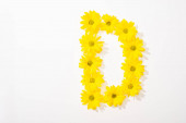 top view of yellow daisies arranged in letter D on white background