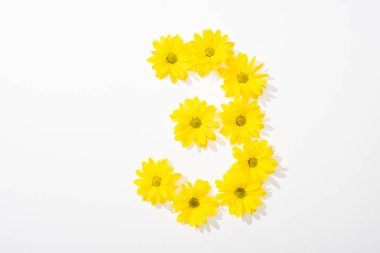 Top view of yellow daisies arranged in number 3 on white background stock vector