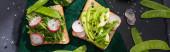 Panoramablick auf vegetarische Sandwiches mit Rettich, grünen Erbsen und Avocado auf Tuch