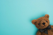Photo Top view of brown teddy bear on blue background