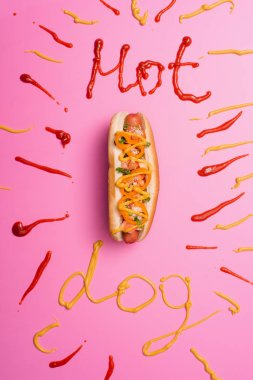 Top view of unhealthy hot dog on pink with word hot dog written with ketchup and mustard stock vector