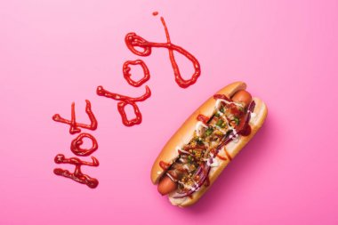 Top view of one hot dog on pink with word hot dog written with ketchup stock vector
