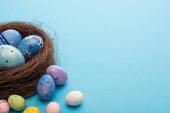 Hnízdo a barevné kuřecí a křepelčí vejce na modrém pozadí
