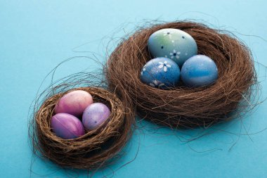 Nests with painted chicken and quail eggs on blue background stock vector