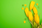 Top view of yellow tulips and colorful decorative hearts on green, spring concept