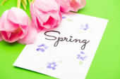 Close up of pink tulips and card with spring lettering on green background