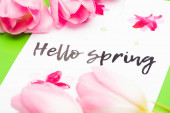Selective focus of pink tulips and card with hello spring lettering on green background