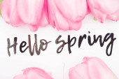 Top view of hello spring lettering with pink tulips on white background