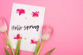 Top view of tulips and card with hello spring lettering on pink background