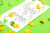 Fotografie Selektivní zaměření karty s jarem přichází nápisy a dekorativní srdce na zeleném pozadí