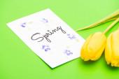Kártya tavaszi felirattal és sárga tulipán zöld alapon