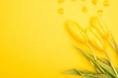 Top kilátás tulipánok és dekoratív szívek sárga alapon, tavasz koncepció