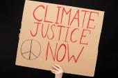 Teilbild einer Frau, die ein Plakat mit Klimagerechtigkeit hält, jetzt isoliert auf schwarzem, globalem Erwärmungskonzept