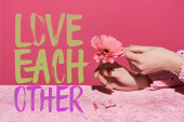 Fotografie cropped view of woman picking gerbera petals on velour cloth isolated on pink, love each other illustration