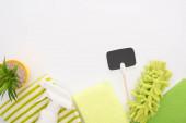 vrchní pohled na pokojovou rostlinu a zelené čisticí prostředky s prázdnou kartou na bílém pozadí