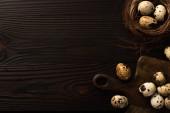 Wachteleier in braunem Nest und auf Schneidebrett auf dunklem Holzgrund