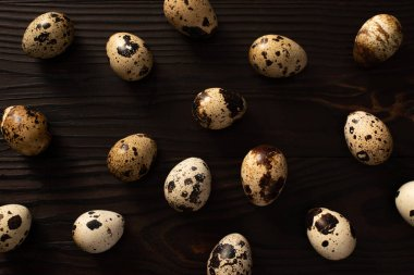 Top view of quail eggs on dark wooden background stock vector