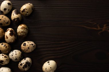 top view of quail eggs on brown wooden surface