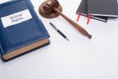 vysoký úhel pohledu na kladívko soudce, modrá kniha s nápisem práv zvířat, pero a černé zápisníky na bílém pozadí