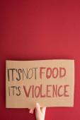 částečný pohled na ženu držící kartónovou ceduli s jeho ne jídlo jeho nápis násilí na červeném pozadí