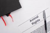 Draufsicht auf schwarze Notizbücher, Tierrechts-Inschrift und Stift auf weißem Hintergrund