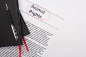 Draufsicht auf schwarze Notizbücher und Stift auf Tierrechtsinschrift auf weißem Hintergrund