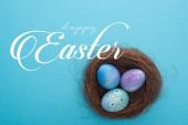 Horní pohled na hnízdo s fialovými velikonočními vejci na modrém pozadí se šťastnou velikonoční ilustrací