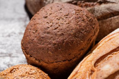 Close up view of fresh baked brown bread stock vector