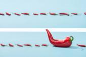 koláž čerstvé červené chilli papričky na modrém povrchu
