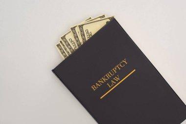 İflas hukuku kitabının en üst görüntüsü ve beyaz arka planda para