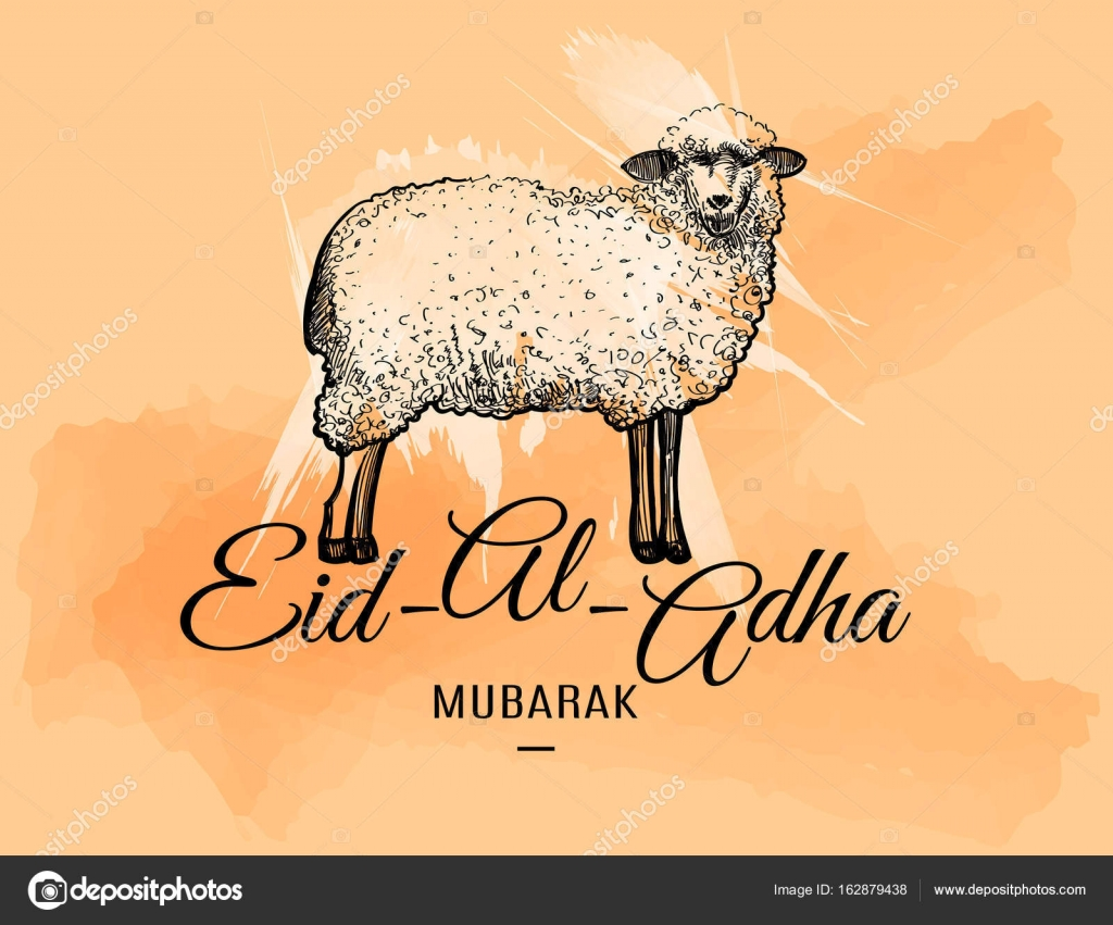 Eid Al Adha Greeting Card With Doodle Sheep Stock Vector