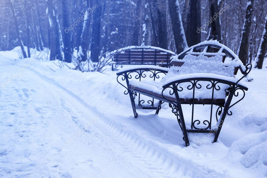 A wooden bench decorated with metal covered with snow in a forest park