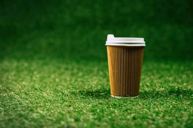 Disposable cup of coffee on green lawn