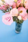 Photo Beautiful pink flowers