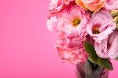 Fotografie Beautiful pink flowers