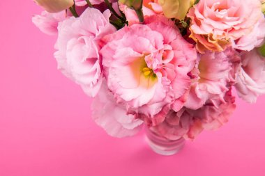 Close-up view of beautiful tender pink eustoma flowers bouquet in vase isolated on pink stock vector