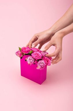 Hands arranging pink roses